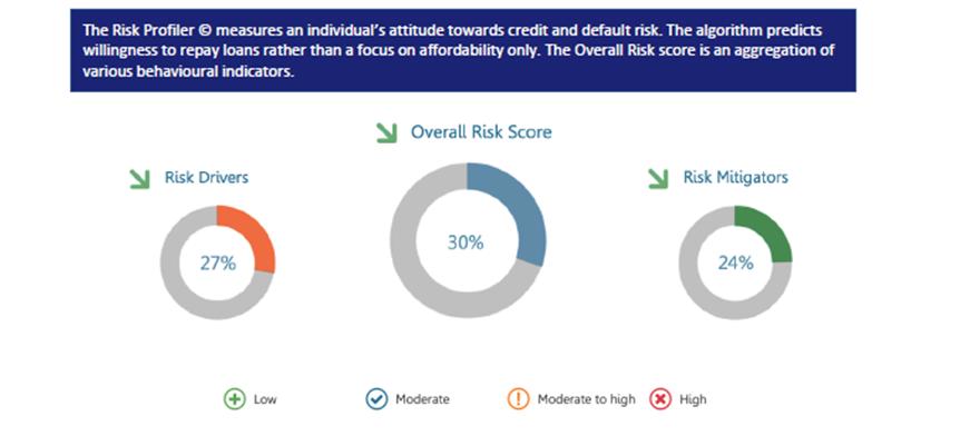 Risk Profiler - Explainer Infographic